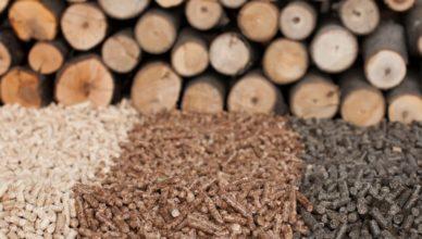Estos son los diferentes tipos de biomasa